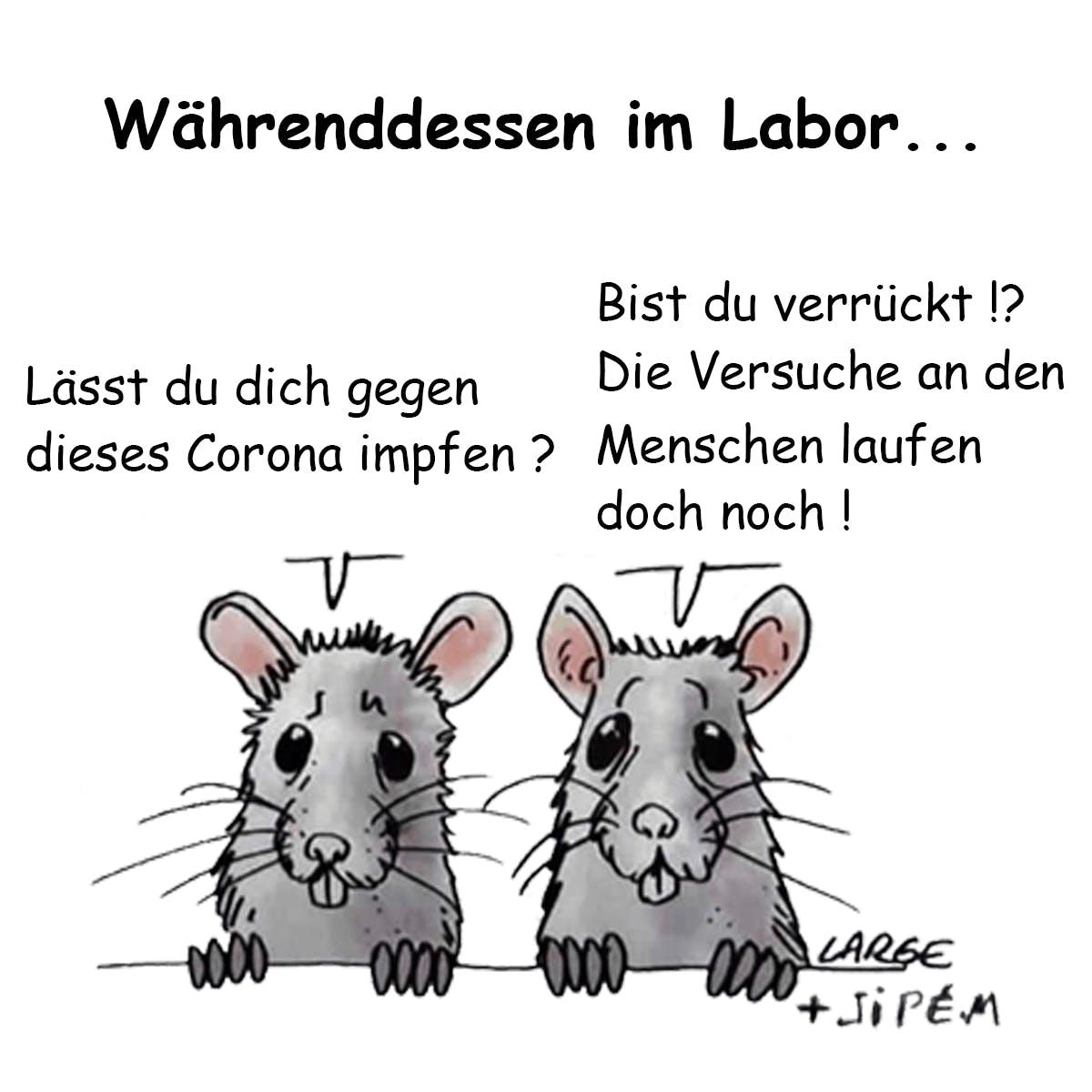 Aufkleber: 100 Stück - 10x10cm - Labor-Ratten über Menschenversuche